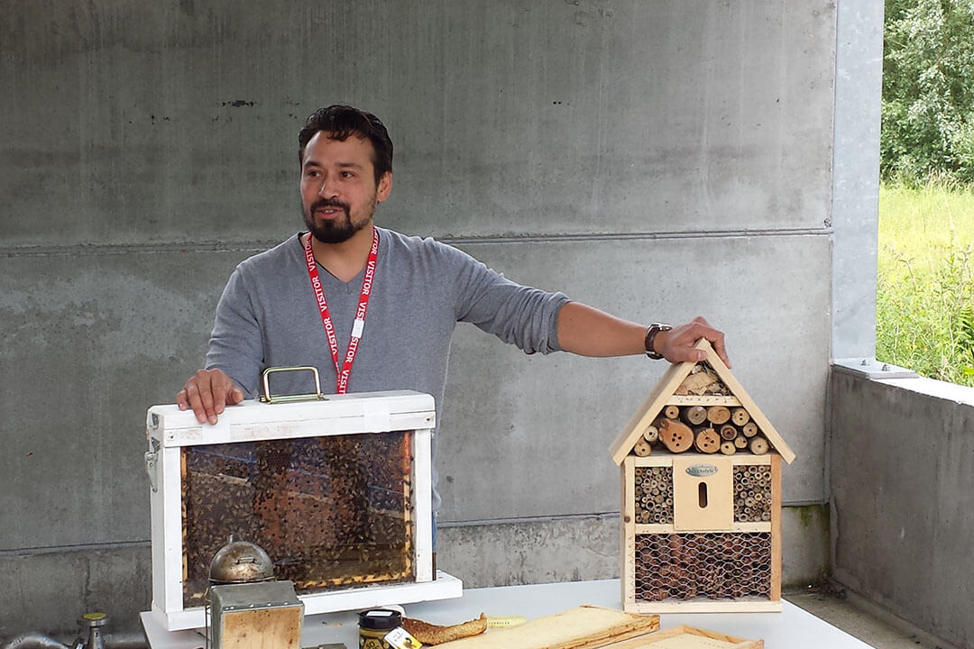 beeodiversity_ucb_projet_explication_ruches_miel_hotel_insectes