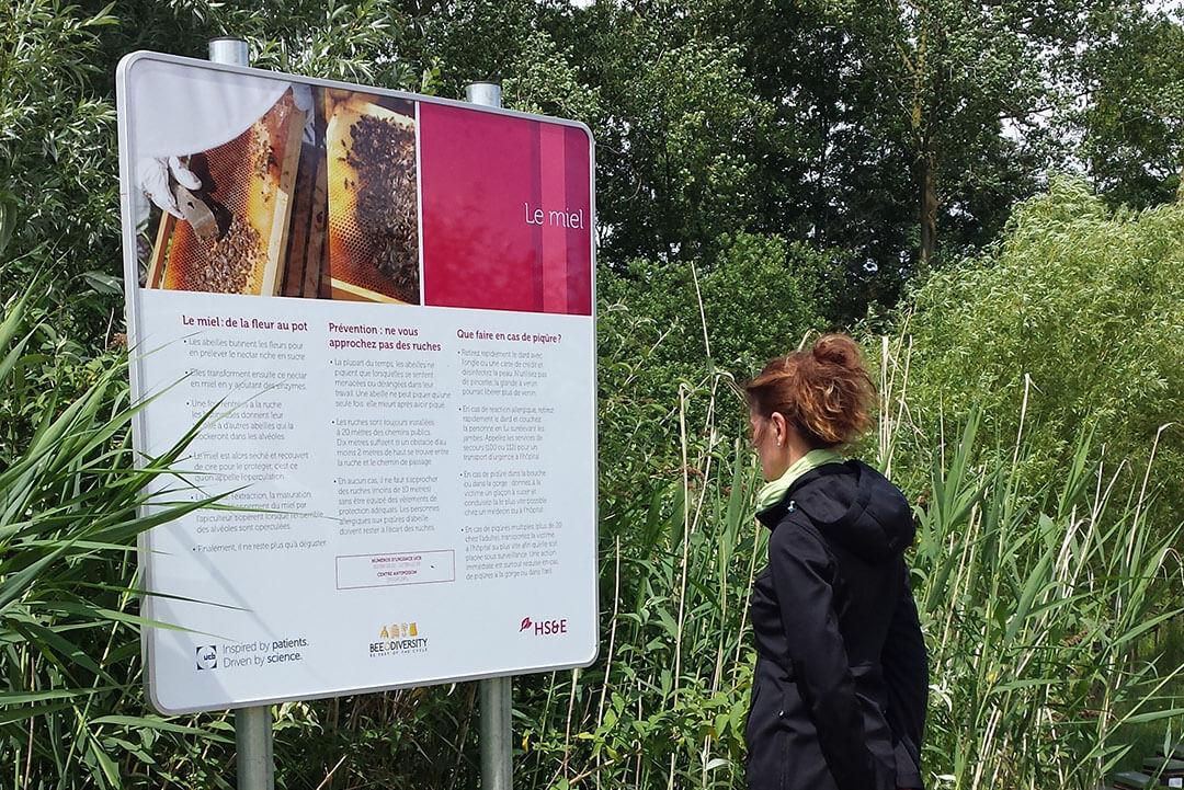 beeodiversity_ucb_projet_nature_panneau_informatif