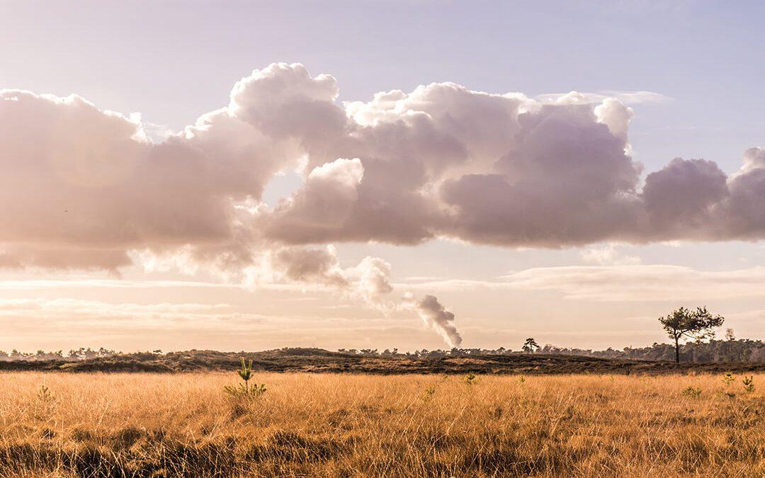 Pollution, a modern-day evil